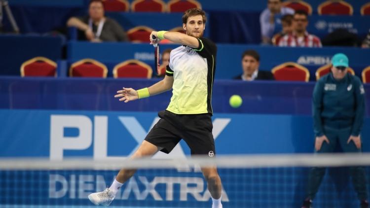 mirza basic tennis